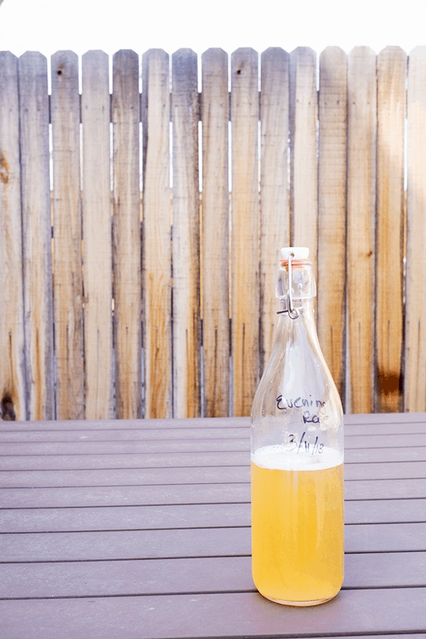 Home brewed Jun, a honey and green tea version of kombucha, bottled on outdoor table