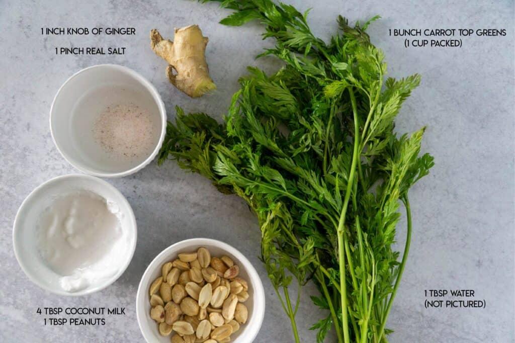 Creamy Peanut Carrot Top Pesto Ingredients: salt, ginger, coconut milk, peanuts, carrot tops, water