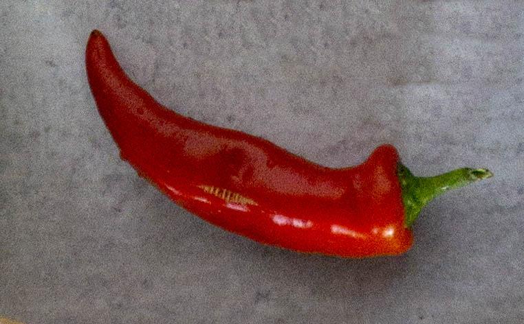 Red Fresno Pepper